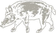 Eberle Winery Boar Logo