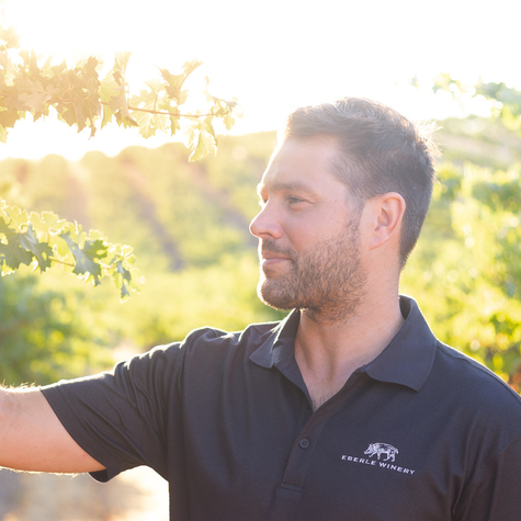 California Vintners Gear Up for 2019 Harvest